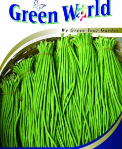 Green World F1 Kacang Panjang Evergreen