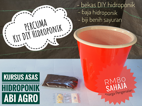Kit DIY Hidroponik